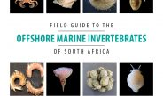 South Africa's first offshore marine invertebrate field guide