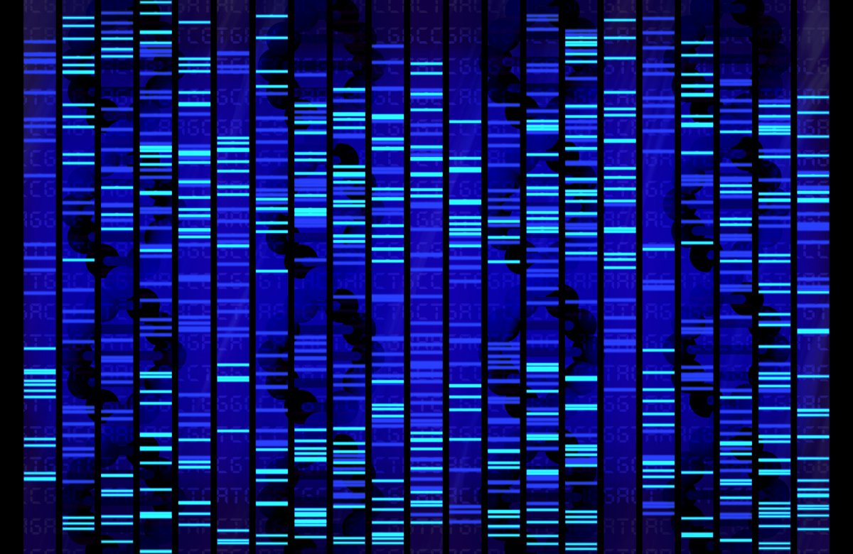 DNA Sequence_124450252